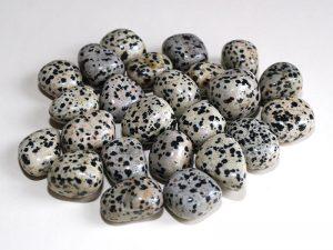 Highly polished Dalmatian Jasper tumble stone size 2-3 cm.