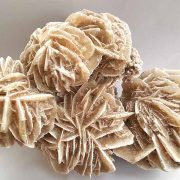 Beautiful Desert Rose 160 mm x 100 mm Approx size.