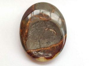 Highly polished Setarium thumb stone.