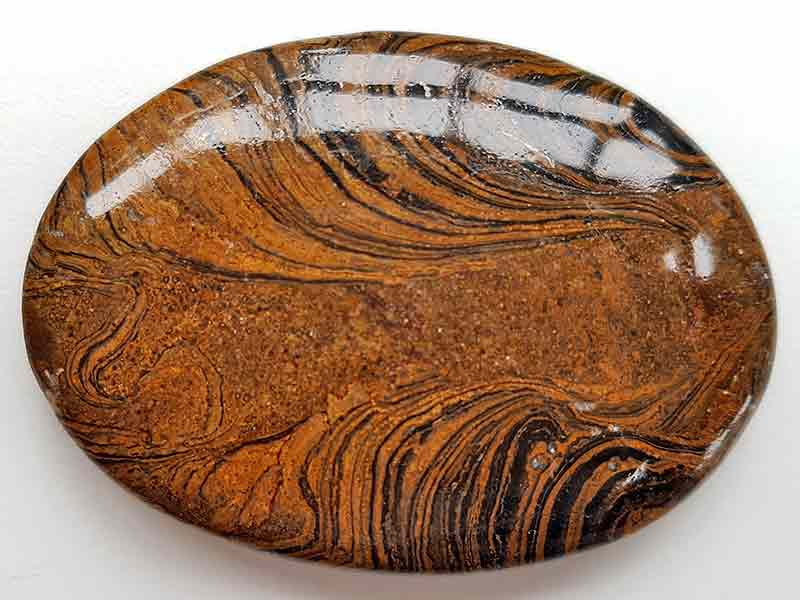 Highly polished Stromatolite palm stone 70 x 40 mm.
